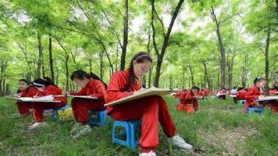 黄河口•孤岛看树
