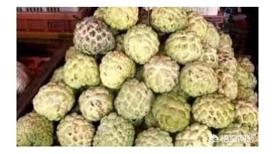 泰国旅游买水果,为何不能接商贩递来的手套?