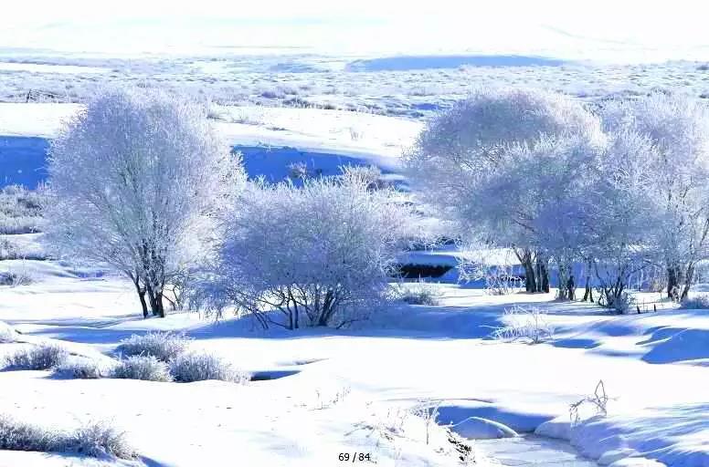 昭苏——摄影家的天堂