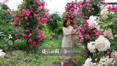 羡慕!他为妻子打造500多种植物花园,只为结婚时一个许诺!