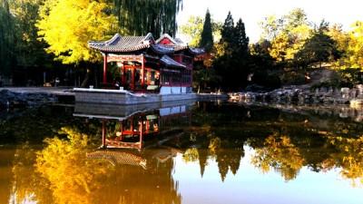 日坛公园秋色