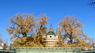 五塔寺——真觉寺金刚宝座塔