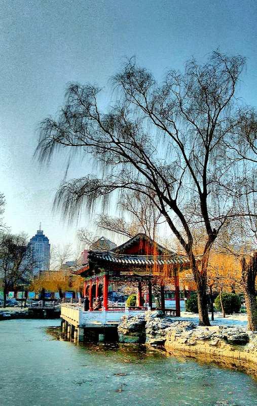 静静的北京,疫情下北京公园掠影