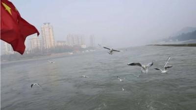 疫情当前警察不退 疫情期间非法捕捞 长航泸州警方喊话:坚决拿下