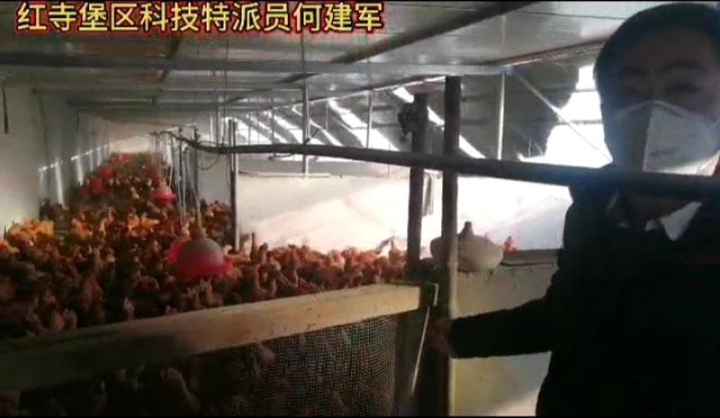 """宁夏吴忠市红寺堡区打响""""专""""字牌服务就业群众"""