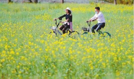 川人游川景区游客回流明显