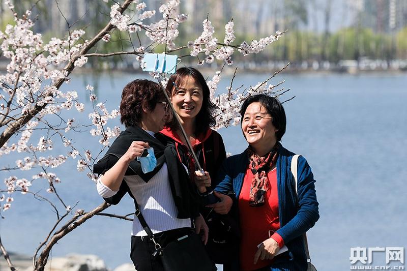 春到北京 花正开