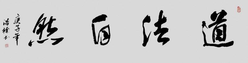 李浩楠书法作品——众志成城 抗击肺炎主题网络书画摄影展优秀作品