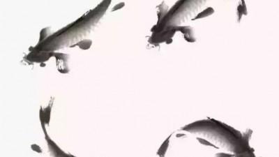 国画写意鲤鱼、金鱼的画法,一学就会!