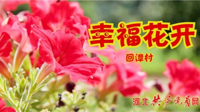 临漳乡村VLOG《幸福花开》引发关注