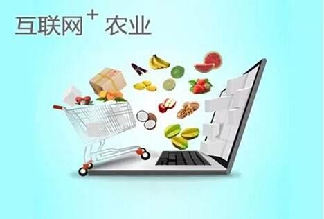 网购农产品成趋势 快递进村速度加快