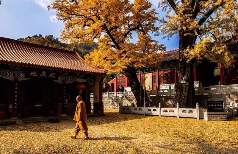 千年古刹——鲁山文殊寺