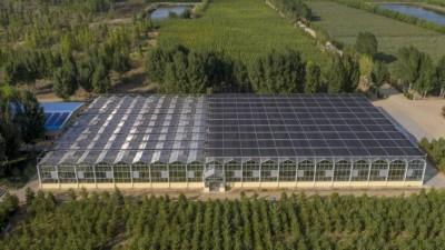 万建民委员:我国新农作物种质资源库将于今年建成