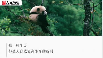 中国国家公园,到底有多宝藏?