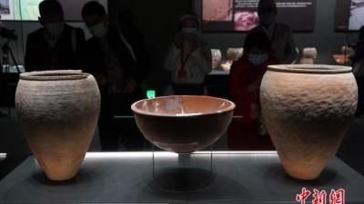 中国考古学者百年追寻:仰韶文化从哪来